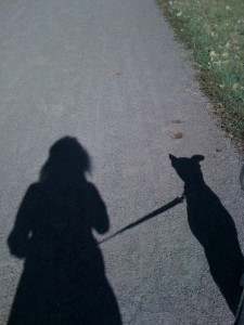 My Second Shadow